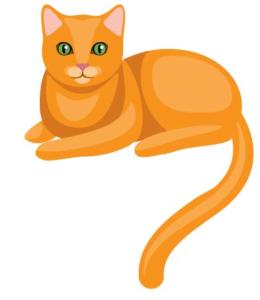 Tiragraffi gatti